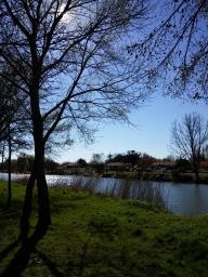 Le long de la Sèvre Niortaise, L'Île d'Elle, Marais Poitevin, Vendée