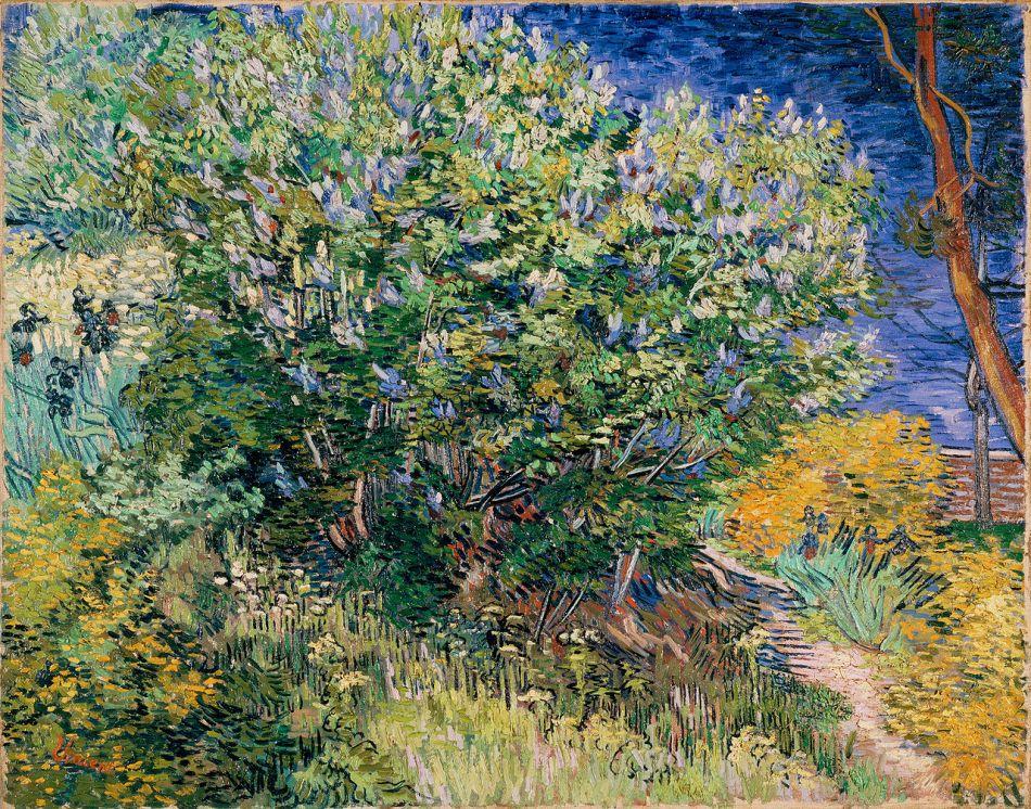 Vincent van Gogh — Hermitage Torrent Photo