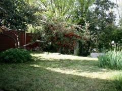 Arrière-jardin après la tonte