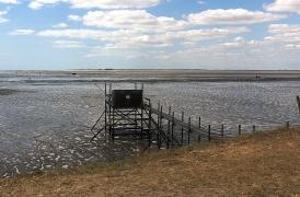Les carrelets (pontons de pêche), emblèmes du littoral charentais - Photos MS Bock Digne le 18/08/2018