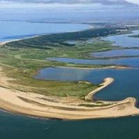 Réserve naturelle de la Pointe d'Arçay en Vendée : balade écologique