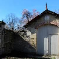 Balade au Gué-de-Velluire dans le Marais poitevin
